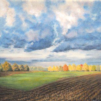 Bunne, Herfst 2 2016